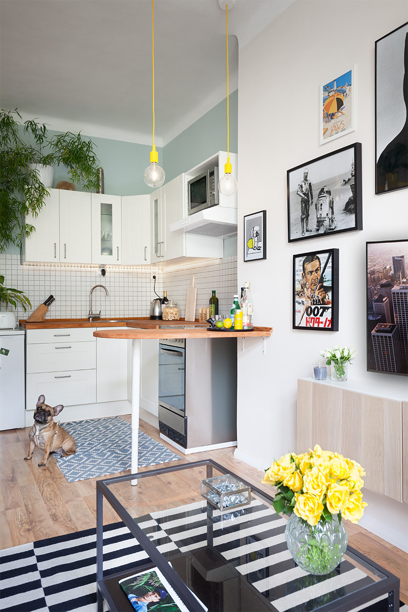 A small bachelor pad in prague rue for Small bachelor pad